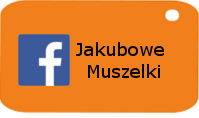 Facebook Jakubowe Muszelki